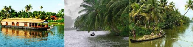 Kerala Nature Tour
